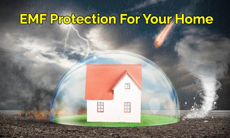 whole house emf protection