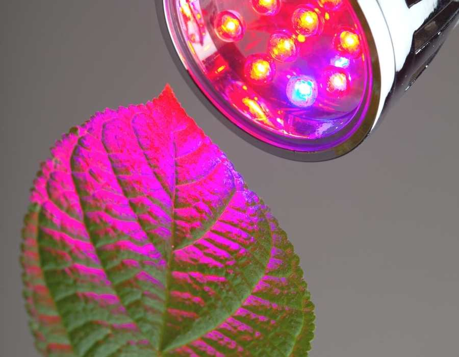 Do Grow Lights Give Off Radiation